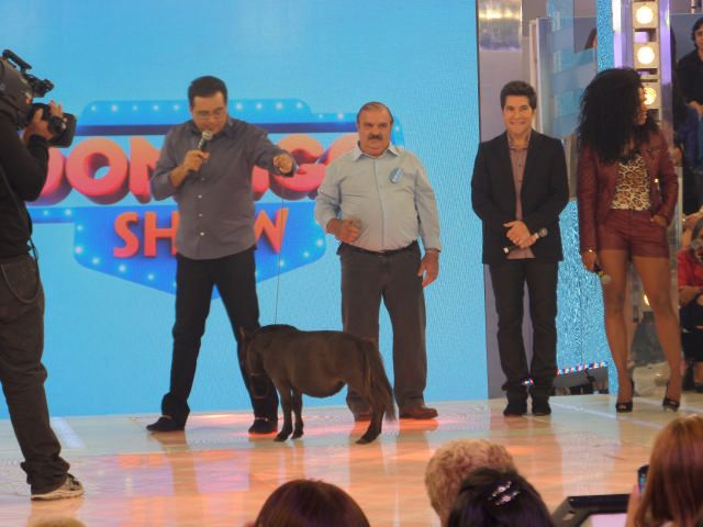PROGRAMA DOMINGO SHOW - RECORD
